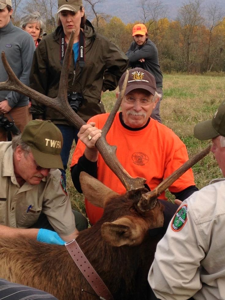 Terry Lewis Tennessee Elk